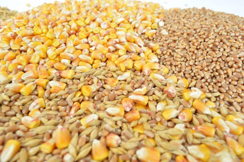Аналітик апк зерно